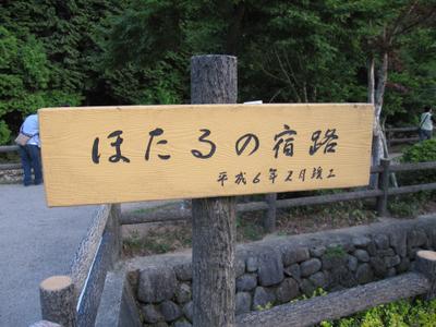 Hotaru_01