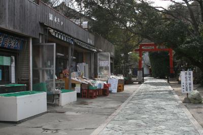 20100206_mankou